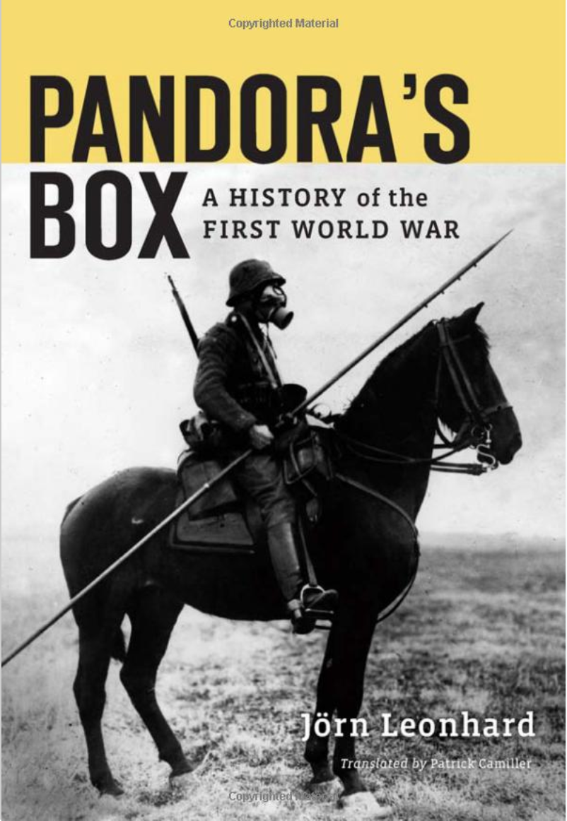 Looking at World War 1 With a Contemporary Lens